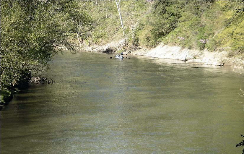 Fly fishing in indiana for Fish in indiana